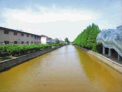 上海金卫城河