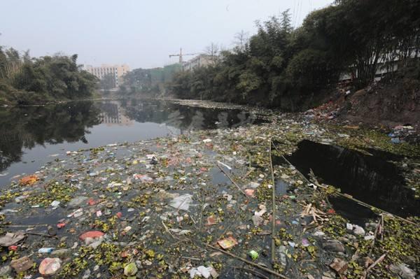 垃圾污染河流