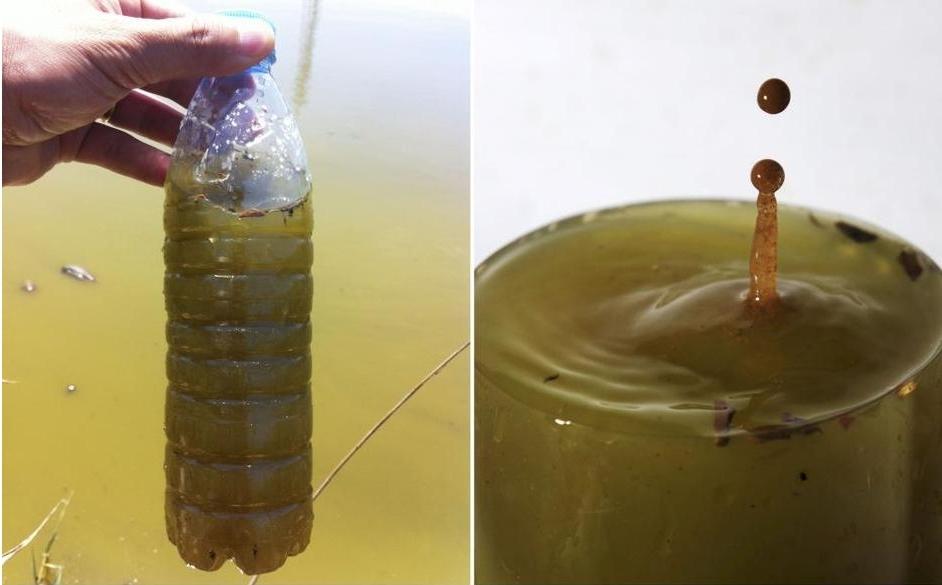 子牙河附近的沟渠采取的一瓶受污染的水