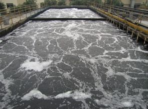 污水厂好厌氧池运行问答解析